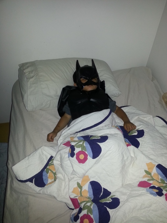 Batman fights crime hard and naps hard